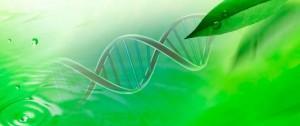 carrousel_biotech-700x295